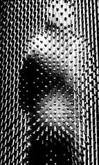 02-Silhouette (Alain COSTE) Tags: jardinpublic museum 2019 nikon bordeaux gironde france
