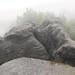 Kipphornaussicht hoch über Schmilka