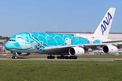 All Nippon Airways (ANA)  Airbus A380-841 F-WWAF (JA382A) (widebodies) Tags: hamburg finkenwerder xfw edhi widebody widebodies plane aircraft flughafen airport flugzeug flugzeugbilder all nippon airways ana airbus a380841 fwwaf ja382a