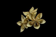 Old Paper Flowers (cas lad) Tags: caslad paperflowers oldbook foxedpaper irigami stilllife