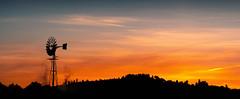 Couso (Noel F.) Tags: sony a7riii iii a7r voigtlander 110 apo cousa estrada galiza galicia sunrise mencer