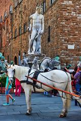"""""""Il Biancone"""" e il cavallo - Il """"Biancone"""" and the horse (Eugenio GV Costa) Tags: approvato firenze statua toscana cavallo piazza dellasignoria florence statue tuscany horse square"""