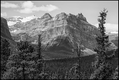 Carved By Ice (greenschist) Tags: trees forest alberta mountains blackwhite canada glacier banffnationalpark clouds snow