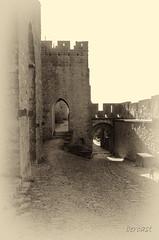 CARCASSONNE-055--OCCITANIE-PANORAMIQUE-_DSC0450 (bercast) Tags: aude carcassonne chateau chateaumedival france lesremparts occitanie ue bc bercast lacitédecarcassonne lamuraille