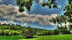 * Andando verso ... (argia world 1) Tags: marche countryside paesaggiocampestre verde alberi campi green trees fields nuvole cielo clouds sky argiagranuzzo rami branches foglie leaves