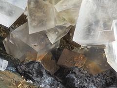 47_Dolomit_Wissen-Siegerland_108B_MPLan5_M5zu1_3.46mm_2Flash (bernardo7777) Tags: jörg joerg bernhard klemmer kristalle makro microfotografie micromounts mineralien mplan5 olympus stacking stack stackshot dolomit