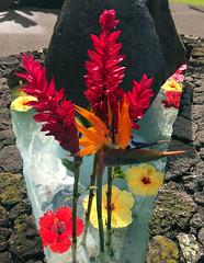 Maui fountain (paulalesliemorrison) Tags: napilikaibeachresort napilibay maui hawaii usa ginger redginger birdofparadise hibiscus tropics tropicalflowers fountain lava