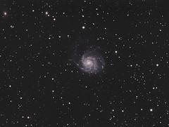 Pinwheel Galaxy (M101) (Phil Wollenberg) Tags: pinwheel galaxy m101 wollenberg astrophotography takahashi sbig televue