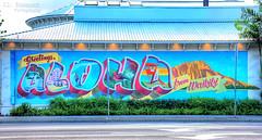 Greetings & Aloha from Waikiki mural - Honolulu, Oahu, Hawaii (J.L. Ramsaur Photography) Tags: jlrphotography nikond7200 nikon d7200 photography photo oahuhi 25thanniversary honolulucounty hawaii 2019 engineerswithcameras islandsofhawaii photographyforgod hawaiianislands islandphotography screamofthephotographer ibeauty jlramsaurphotography photograph pic oahu tennesseephotographer oahuhawaii 25years anniversarytrip bucketlisttrip thegatheringplace 3rdlargesthawaiianisland 20thlargestislandintheunitedstates therainbowstate greetingsalohafromwaikikimural greetingsalohafromwaikiki greetingsfromwaikiki alohafromwaikiki mural painting art aloha diamondheadstatepark diamondheadstatemonument diamondhead hdr worldhdr hdraddicted bracketed photomatix hdrphotomatix hdrvillage hdrworlds hdrimaging hdrrighthererightnow vintagepostcard vintagepostcardmural vintagepostcardpainting waikiki waikikibeach sign signage it'sasign signssigns iseeasign signcity