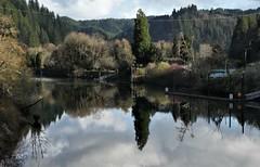 mapleton part deux (atlantic mine) Tags: mapleton oregon river timber lumber reflect reflective peaceful