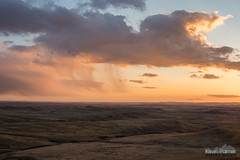Diamond Butte Virga (kevin-palmer) Tags: diamondbutte montana custernationalforest clouds evening scenicview virga storm rain sunset gold golden sunlight hills tamron2470mmf28 sky nikond750