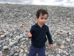 Lawrencetown Provincial Beach, Nova Scotia (brownpau) Tags: iphonex lawrencetown lawrencetownbeach beach rocks canada novascotia halifax ezraordo ezra