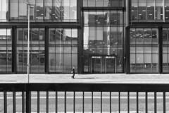 Glasgow Julio 2018_076 (c a r a p i e s) Tags: carapies cityscapes 2018 nikond700 scotland glasgow architecture arquitectura bw blancoynegro blackwhite fotografiaurbana urban urbanphotography urbanidad urbvanidad urbvanity urbanphoto streetphoto streetlife streetphotography