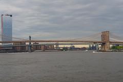 P5110651 (Vagamundos / Carlos Olmo) Tags: vagamundos vagamundos19usa new york newyork nuevayork usa eeuu