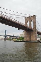 P5110704 (Vagamundos / Carlos Olmo) Tags: vagamundos vagamundos19usa new york newyork nuevayork usa eeuu