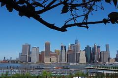 P5110608 (Vagamundos / Carlos Olmo) Tags: vagamundos vagamundos19usa new york newyork nuevayork usa eeuu