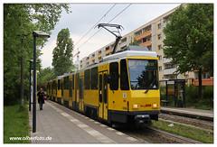 Tram Berlin - 2019-10 (olherfoto) Tags: bahn tram tramcar tramway villamos berlin bvg tatra tatratram kt4d