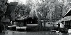 chinese garden@Ruhr-University Bochum, Germany (Amselchen) Tags: canoneos6dmarkii ef2470mmf4lisusm panorama canon germany bnw blackandwhite
