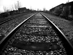 Montreal-Rosemont Train Tracks (MassiveKontent) Tags: traintracks railway streetphotography bwphotography streetshot geometric lines symmetry bw contrast city monochrome urban blackandwhite streetphoto noiretblanc blackwhite montreal montréal quebec gopro fisheye blancoynegro railroad train