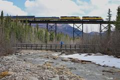 Denali Park, Alaska (UW1983) Tags: trains railroads alaskarailroad arr denalistar passengertrains rileycreek denalinationalpark alaska