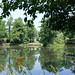 Griffin Pond at Halifax Public Gardens