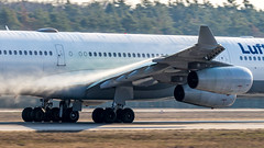 Airbus A340-313 D-AIGZ Lufthansa (William Musculus) Tags: frankfurt am main rhein fraport frankfurtmain fra eddf airport flughafen spotting airplane plane aviation daigz lufthansa airbus a340313 anti ice icing lh dlh a340300