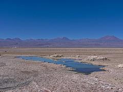 Wasser in der Wüste (Ralph Ueschner) Tags: chile atacama desert wüste antofagasta