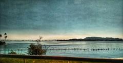 viagem (lucia yunes) Tags: viagem passeio paisagem caminho estrada landscape mobilephotography mobilephoto luciayunes motomaxx mar seascape riodejaneiro