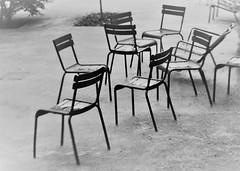 6Q3A8631 (2) (www.ilkkajukarainen.fi) Tags: blackandwhite mustavalkoinen monochrome carden piha puutarha chairs tuolit paris pariisi happy life visit travel travelling lifeline sade raining spring 2019