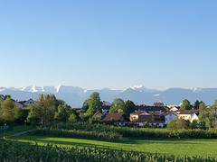 Der Tag fängt gut an - The day starts well (wb.fotografie) Tags: deutschland lindau bayern vorarlberg bodensee grün blauerhimmel sonnenschein sonne schnee berge bergwelt österreich
