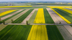 Fields (piotr_szymanek) Tags: landscape drone fields 1k 20f 50f road village tree forest agriculture 5k