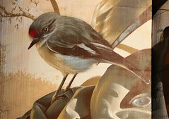 Female Red-capped Robin painted on Wirrabara Silo, South Australia (Red Nomad OZ) Tags: wirrabara southaustralia australia silo siloart art painting outdoor southernflindersranges midnorth flindersranges country rural countryside