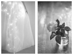 moondance (l'imagerie poétique) Tags: ilforddelta3200 ilforddelta400 diptych conversationswithlight