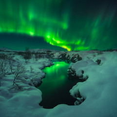 Northern Lights in Iceland (Iurie Belegurschi www.iceland-photo-tours.com) Tags: northernlights aurora auroraborealis reflection winter winterscape winterwonderland wintery snowy snow water thingvellir sky night nightsky nightscape adventure arctic cold enchanting fineartlandscape fineart fineartphotography fineartphotos finearticeland guidedphotographyworkshops guidedphotographytour guidedtoursiceland guidedtoursiniceland icelandphototours iuriebelegurschi iceland icelandic icelanders icelandphotographyworkshops icelandphotographytrip icelandphotoworkshops landscape landscapephotography landscapephoto landscapes landscapephotos longexposure nature outdoor outdoors phototours phototour photographyiniceland photographyworkshopsiniceland travel travelphotography workshop workshops frozen freezing