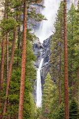 Classic Yosemite Falls View (optimalfocusphotography) Tags: northerncalifornia california usa waterfall landscape yosemite trees nature nationalpark water yosemitenp telephoto yosemitefalls longexposure spring yosemitenationalpark