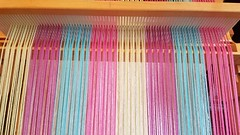 Sleying of back heddle for 3-shaft weaving on rh loom. 20 ends of color in ea stripe (Sweet Annie Woods) Tags: