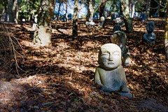Guards of the Forest _8247 (hkoons) Tags: bacalhôabuddhaedengarden iberianpeninsula bamiyan bombarral buddha buddhas city europe people portugal tree arbor art artist artistic bloom blossom branch branches brass bronze bud buds canopy color enjoyment fern flora flower garden green growth landscape leaf leaves limb limbs natural naturalist nature outdoors panorama quiet roots sculpture soil statue stem stone sun sunlight sunshine tranquility trees trunk