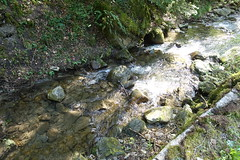 Hike to Mont Orchez (*_*) Tags: may 2019 afternoon spring printemps cluses europe france hautesavoie 74 savoie hiking mountain montagne walk marche randonnee nature englennaz waterfall cascade