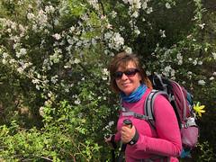 M and flowers (piotr_szymanek) Tags: outdoor landscape tree forest green marzka woman milf portrait face eyesoncamera glasses sunglasses 1k 5k 20f 10k