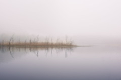 20190511  Velskola-2 (MattiBo) Tags: mist fog light finland forest d750 nikon nature moody maisema minimalistic morning scandinavia suomi sunrise travel nuuksio trees tranquil reflection exposure beautiful landscape