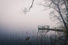 20190511  Velskola-3 (MattiBo) Tags: serene finland forest landscape landscapes moody mist morning minimalistic maisema nikon d750 colors scandinavia exposure järvi jetty nature nuuksio