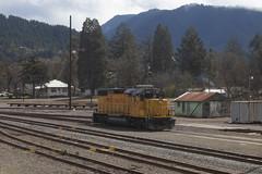 UP 567 (imartin92) Tags: oakridge oregon train unionpacific freight rail railroad emd gp382 locomotive cascades mountains