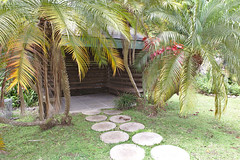 IMG_1438_a (Jennika Argent) Tags: jennikaargent barbados caribbean west indies