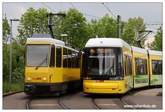 Tram Berlin - 2019-13 (olherfoto) Tags: tram tramcar tramway strasenbahn berlin bvg tatra tatratram kt4d villamos flexity fe8