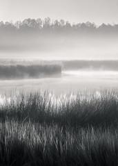 A Winter Fog (Charles Opper) Tags: bw blackbeardcreek canon georgia winter atmosphere blackandwhite fog landscape light marsh mist monochrome morning nature sunrise water
