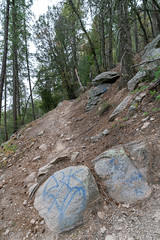 1905 Graffiti on the Green Mountain Trail 02 (c.miles) Tags: coronadonationalforest graffiti greenmountaintrail santacatalinamountains
