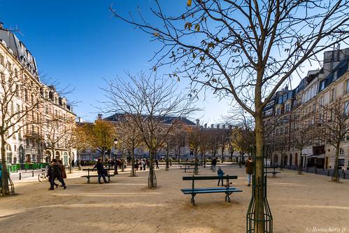 Paris-ile de la cité:la place dauphine