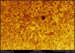 2019.05.12 - 12:55:36 AR2741 (Andries Cafmeyer Astrophotography) Tags: sol sun zon soleil sonne solar star astro astronomy astrophotography sunspot celestron cgx tsoptics 152mm baader erf daystar quark hydrogenalpha ha zwo asi 174mm firecapture autostakkert registax adobe photoshop topaze denoise ai ar2741