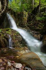 Liquid silk (Ivan Gualtieri) Tags: stream silky lively long exposure esposizione lunga torrente seta waterfall cascata lenna italy italia orobie alps alpi