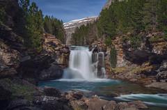 Deshielo en Ordesa (Chusmaki) Tags: ordesa pirineos huesca primaver deshielo río arazas naturaleza bosques cascadas